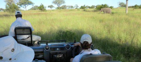 Open Safari Vehicle