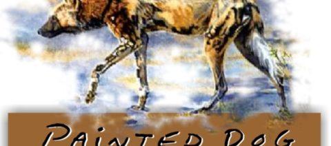 Wild Dog Fundraiser
