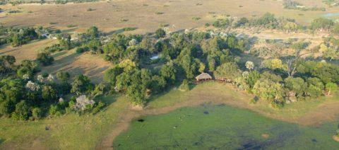 Mombo Camp Moremi Botswana