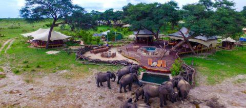 Somalisa Camp, Hwange, Zimbabwe