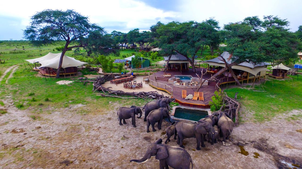 2017 Best Value African Safari Best 5 000 You Can Spend