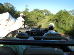 Open-Safari-Vehicle-3